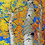 Tall Aspen Trees Poster