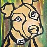 Tan Dog Poster
