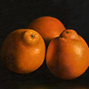 Tangerines Poster by Anthony Enyedy