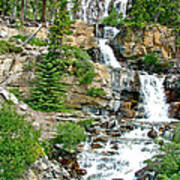 Tangle Falls Along Icefield Parkway In Alberta Poster