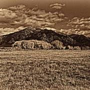 Taos Mountain In Platinum  Poster