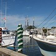 Tarpon Springs Fishing Boats  Poster