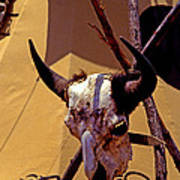 Tatanka Skull Poster