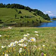 Tau Mare Lake Poster