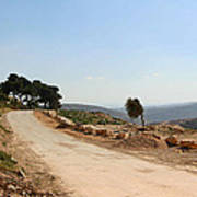 Taybeh Side Road Poster