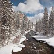 Taylor River Winter Poster