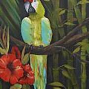 Teal Chartreuse Parrot Poster