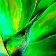 Technicolor Succulent Poster