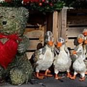 Teddy Bear With Flock Of Stuffed Ducks Poster
