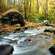 Tennessee Stream In Fall Poster