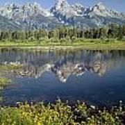 4m9310-teton Range Reflection, Blacktail Pond, Wy Poster