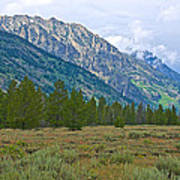 Tetons Above The Meadow In Grand Teton National Park-wyoming Poster