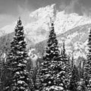 Tetons In Snow Poster