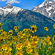 Tetons Peaks And Flowers Left Panel Poster