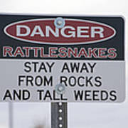 Texas Danger Rattle Snakes Signage Poster