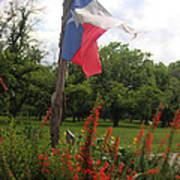 Texas Glory Poster