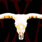Texas Longhorns By Sharon Cummings Poster
