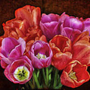 Textured Tulips Poster