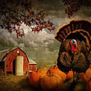 Thanksgiving Turkey Among Pumkins Poster