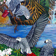 The African Grey Parrots Poster