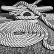 The Art Of Rope Lying Poster