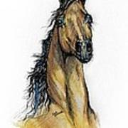 The Bay Arabian Horse 13 Poster