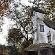 The Birdhouse Kingdom - Mountain Chickadee Poster