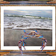 The Blue Crab Poster