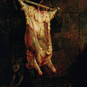 The Carcass Of An Ox, Late 1630s Poster