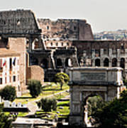 The Colosseum Through The Forum Poster