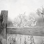 The Country Fence In Black And White Poster