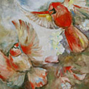 The Dance Of The Cardinals Poster by Susan Hanlon