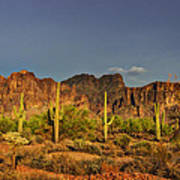 The Desert Aglow Poster