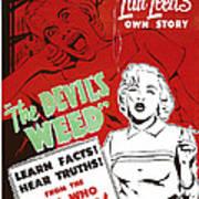 The Devils Weed, Aka Wild Weed, Aka She Poster