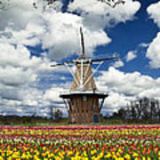 The Dezwaan Dutch Windmill Among The Tulips On Windmill Island In Holland Michigan Poster