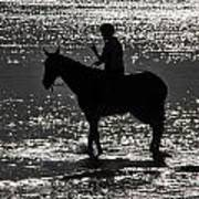 The Equestrian-silhouette Poster