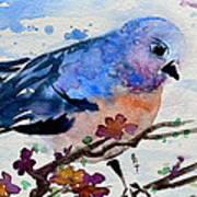 The First Bluebird Poster