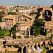 The Forum From The Palatine Poster