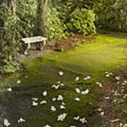 The Garden Bench Poster