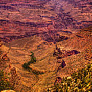 The Grand Canyon From Bright Angel Lodge Poster