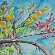 The Lemon Tree Poster