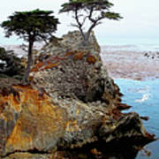 The Lone Cypress - Pebble Beach Poster by Glenn McCarthy Art and Photography