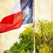 The Lone Star Flag Poster