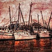 The Marina Poster