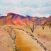 The Mesquite Trail Arizona Poster