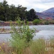 The Naches River Poster