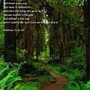 The Narrow Way Poster