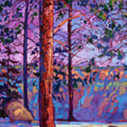 The North Rim Hexaptych - Panel 1 Poster