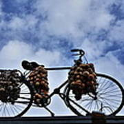 The Onion Bicycle Poster