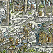 The Physic Garden, 1531 Poster